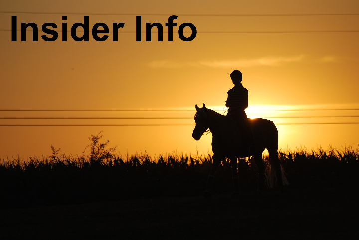 Horse Racing Systems | Insider Info Service